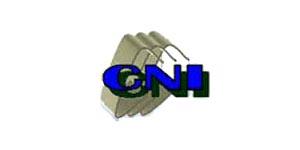 PT. CNI